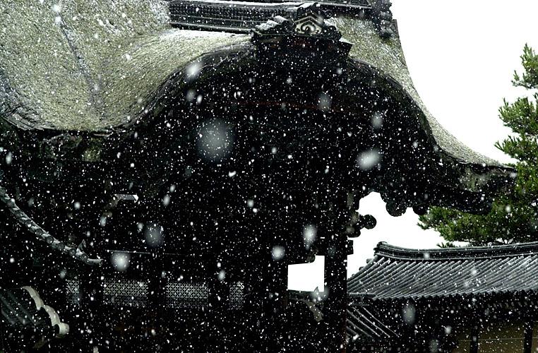 Japan_dag8_0019.jpg